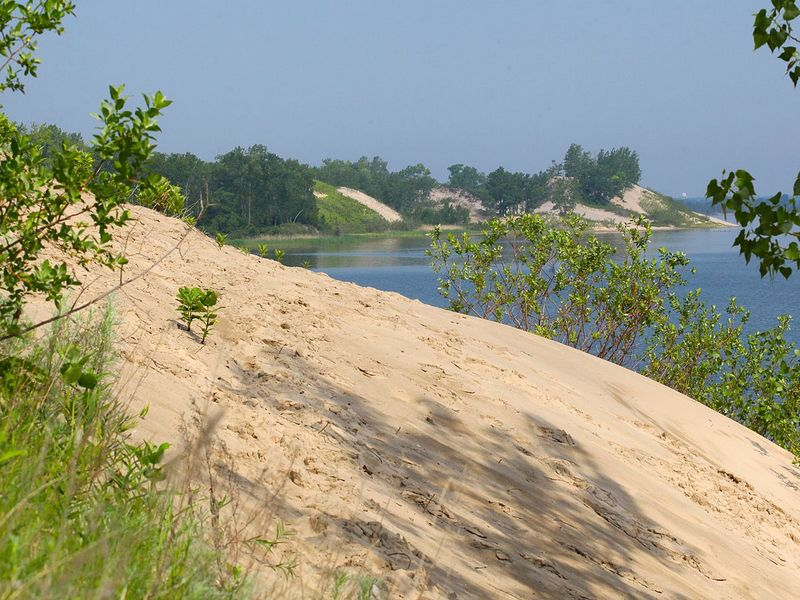 Cedar Sands Nature Trail