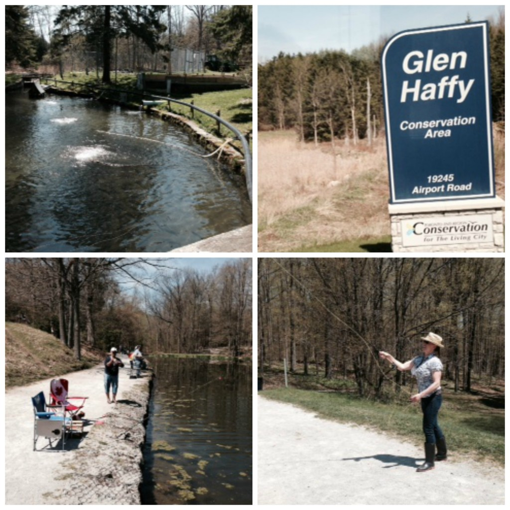 Fly fishing at Headwaters Region of Ontario