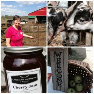 Ontario Farmers Market at Headwaters Region