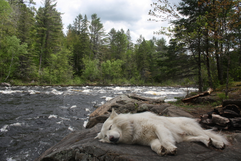 Afternoon nap at Crooked Chute, Algonquin Petawawa River