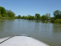 View of the shallow Grand River from our boat - Byng Island Conservation Area