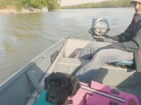 Boating the grand river, Byng Island Conservation Area