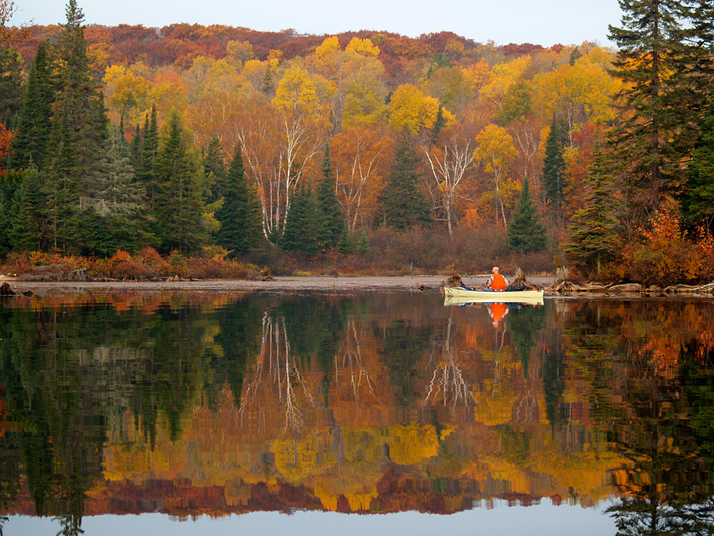 Little Doe Lake, Algonquin Fall Colours