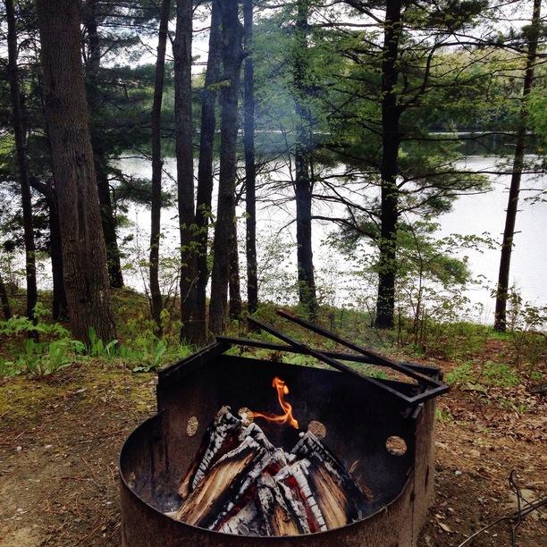 Sharbot Lake Provincial Park Campsite