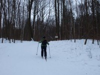 Cross-country skiing at Hilton Falls Conservation Area