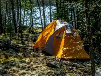 Thicketwood tent pad