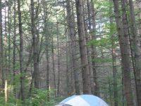 Camping at Mazinaw Lake campground_Bon Echo Provincial Park (1)
